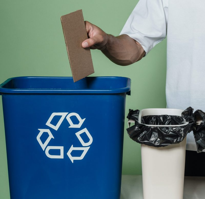 Paper and Cardboard Recycling: The Easy Guide